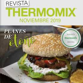 thermomix 133